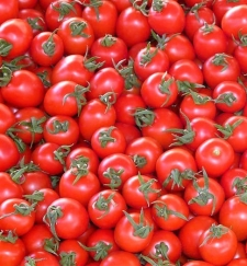 tomatoes-vegetables-red-delicious-68133